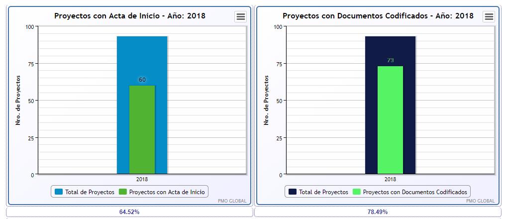 pmo_informe1